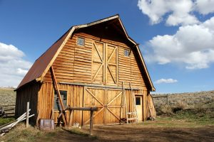 Build a Shed, Barn, and Playhouse