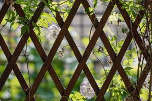 Build a Custom Arbor, Pergola, and Trellis